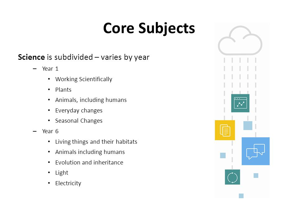 Core Subjects Science is subdivided – varies by year – Year 1 Working Scientifically Plants Animals, including humans Everyday changes Seasonal Change