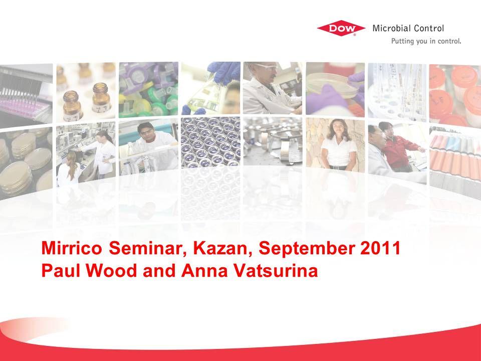 Mirrico Seminar, Kazan, September 2011 Paul Wood and Anna Vatsurina
