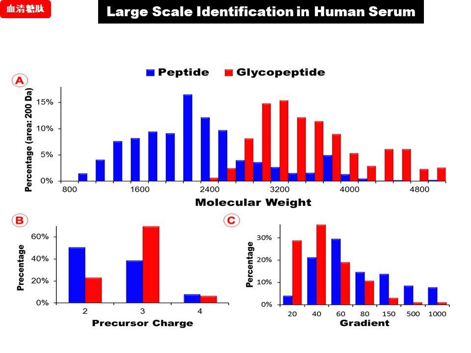 Large Scale Identification in Human Serum 血清糖肽
