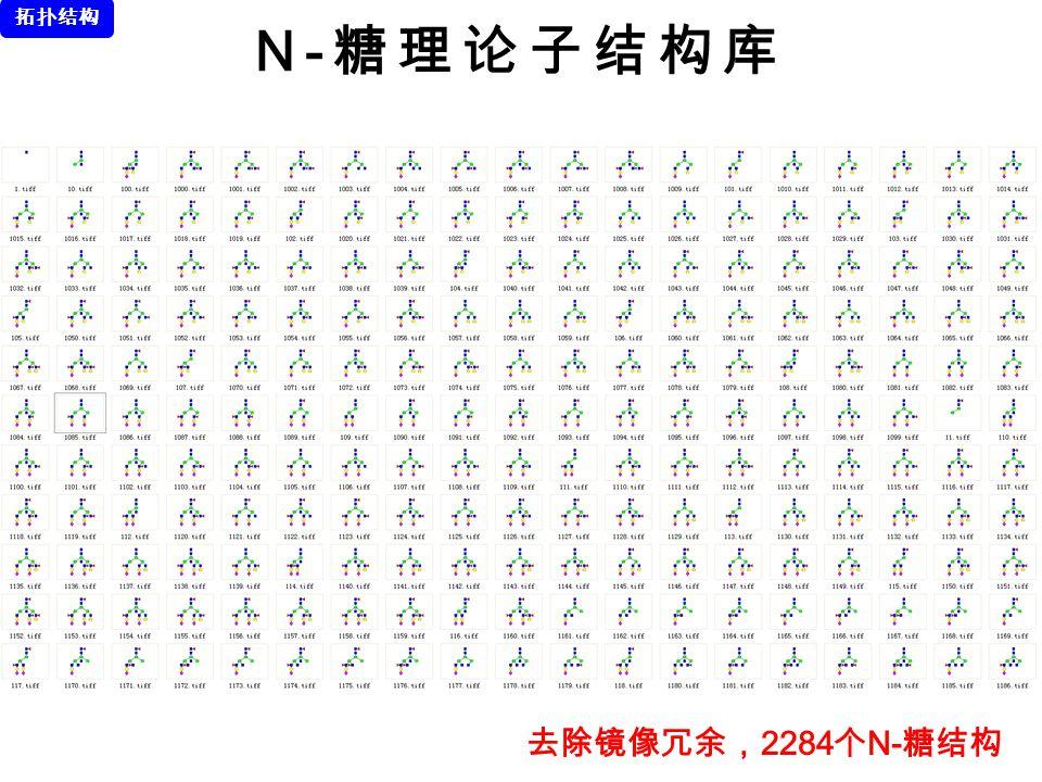 N- 糖理论子结构库 去除镜像冗余, 2284 个 N- 糖结构 拓扑结构