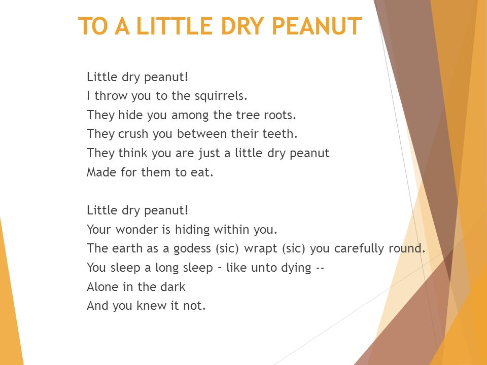 TO A LITTLE DRY PEANUT Little dry peanut! I throw you to the squirrels. They hide you among the tree roots. They crush you between their teeth. They t