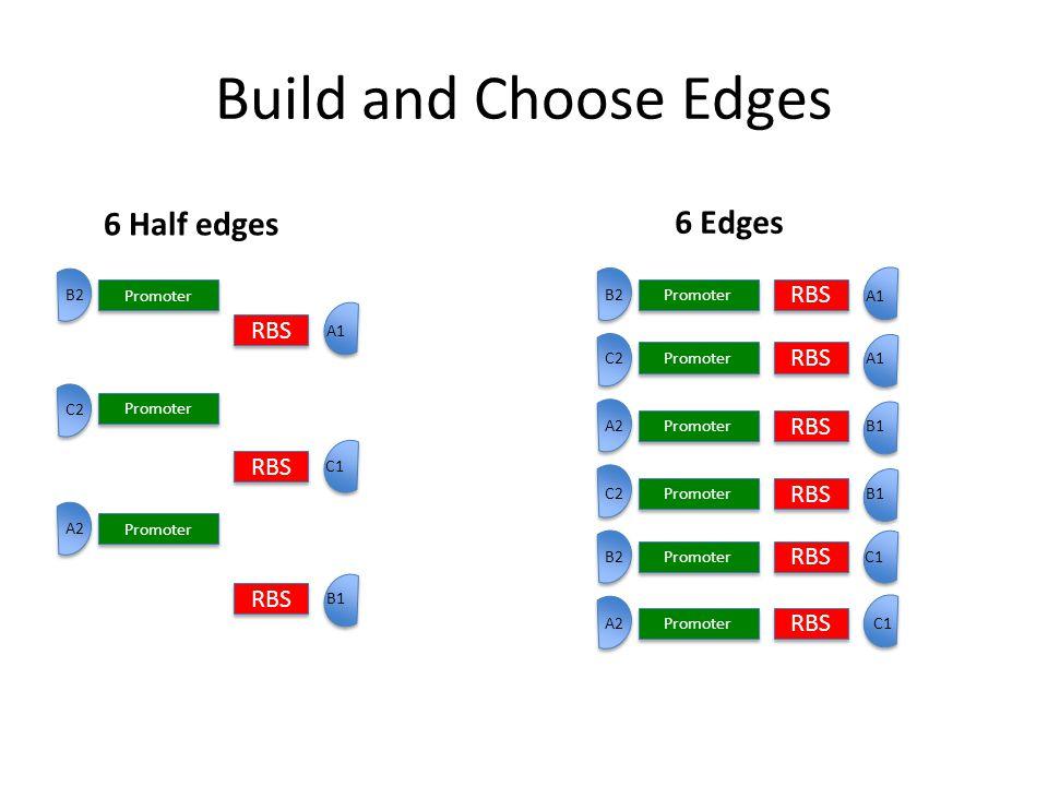 Build and Choose Edges 6 Edges 6 Half edges RBS Promoter RBS A1 B1 C1 A2 C2 B2 Promoter B2 RBS A1 Promoter C2 Promoter A2 RBS B1 RBS C1