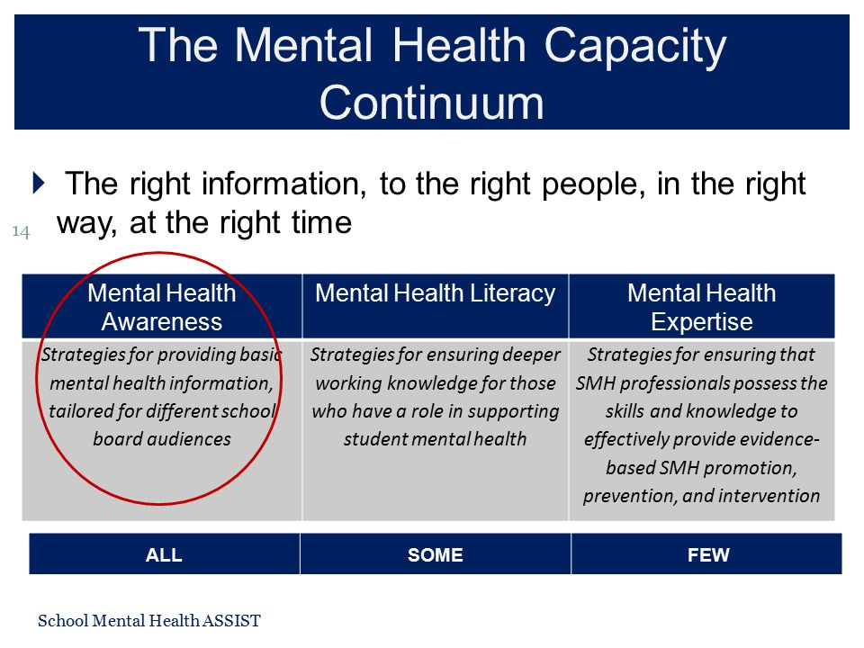 The Mental Health Capacity Continuum School Mental Health ASSIST 14  The right information, to the right people, in the right way, at the right time