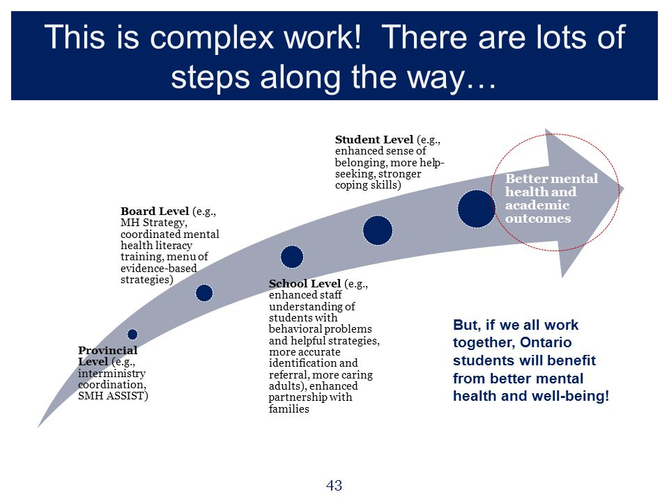 This is complex work! There are lots of steps along the way… Provincial Level (e.g., interministry coordination, SMH ASSIST) Board Level (e.g., MH Str