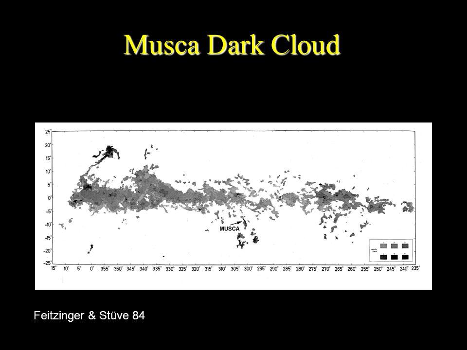 Musca Dark Cloud Feitzinger & Stüve 84