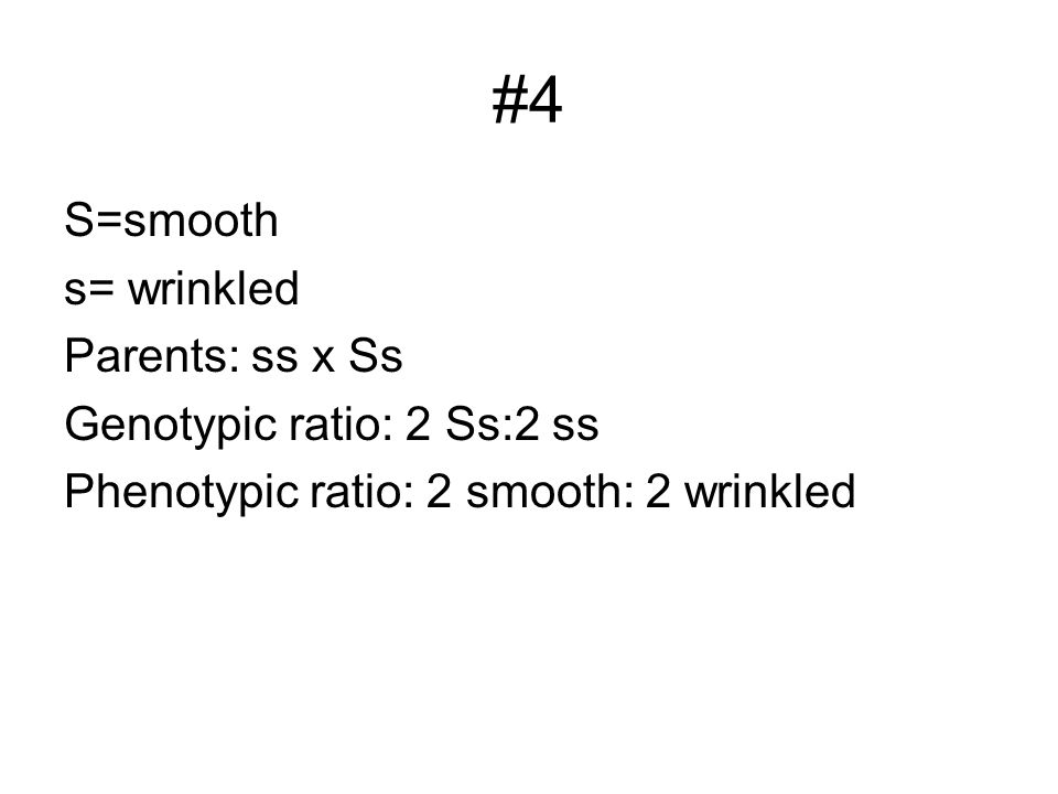 #4 S=smooth s= wrinkled Parents: ss x Ss Genotypic ratio: 2 Ss:2 ss Phenotypic ratio: 2 smooth: 2 wrinkled