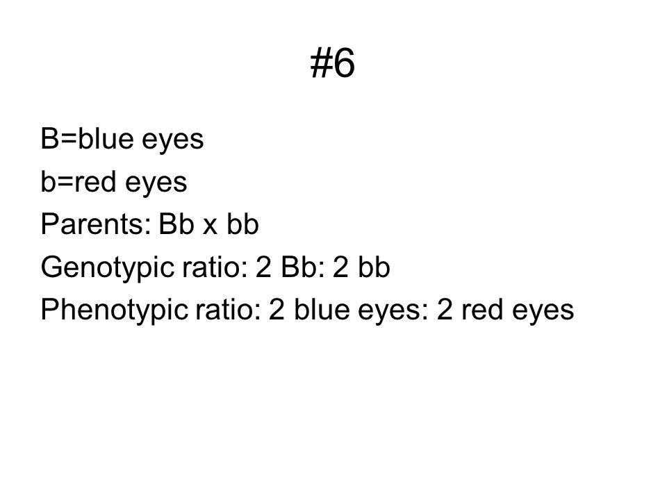 #6 B=blue eyes b=red eyes Parents: Bb x bb Genotypic ratio: 2 Bb: 2 bb Phenotypic ratio: 2 blue eyes: 2 red eyes