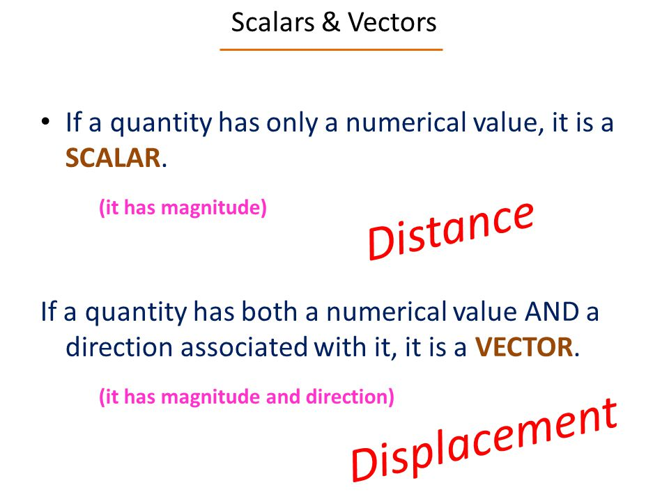 Scalars & Vectors If a quantity has only a numerical value, it is a SCALAR.
