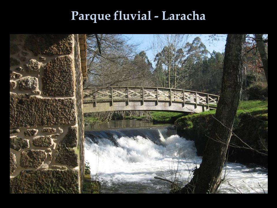 Parque fluvial - Laracha