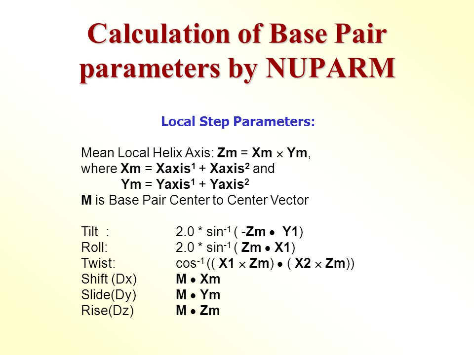 Calculation of Base Pair parameters by NUPARM Local Step Parameters: Mean Local Helix Axis: Zm = Xm  Ym, where Xm = Xaxis 1 + Xaxis 2 and Ym = Yaxis 1 + Yaxis 2 M is Base Pair Center to Center Vector Tilt : 2.0 * sin -1 ( -Zm  Y1) Roll: 2.0 * sin -1 ( Zm  X1) Twist:cos -1 (( X1  Zm)  ( X2  Zm)) Shift (Dx) M  Xm Slide(Dy)M  Ym Rise(Dz) M  Zm