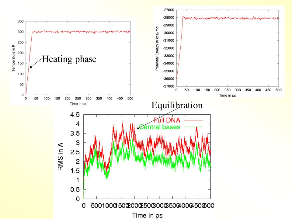 Heating phase Equilibration