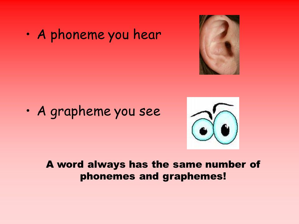 A phoneme you hear A grapheme you see A word always has the same number of phonemes and graphemes!