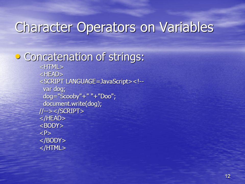 12 Character Operators on Variables Concatenation of strings: Concatenation of strings:<HTML><HEAD> <!-- var dog; var dog; dog=