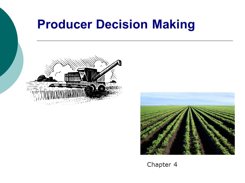 Producer Decision Making Chapter 4