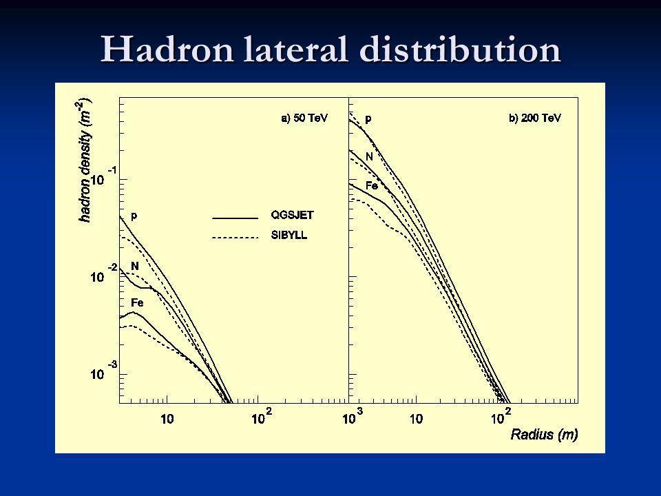 Hadron lateral distribution