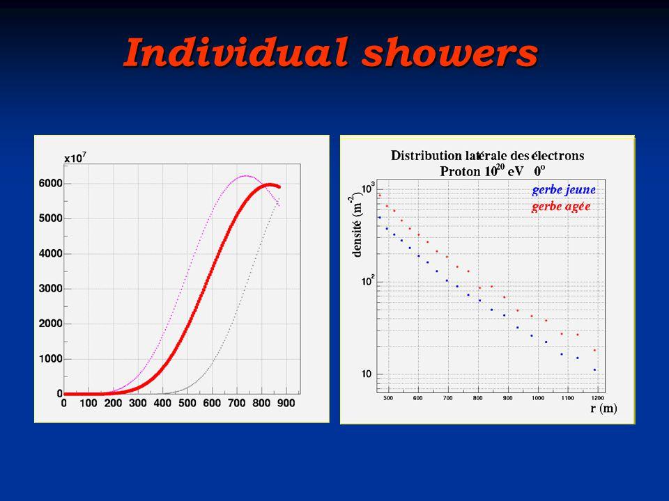 Individual showers Individual showers