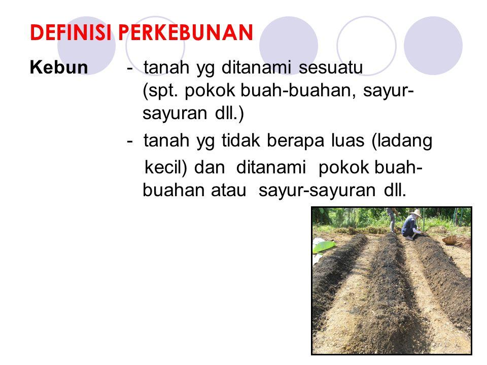 DEFINISI PERKEBUNAN Kebun - tanah yg ditanami sesuatu (spt.