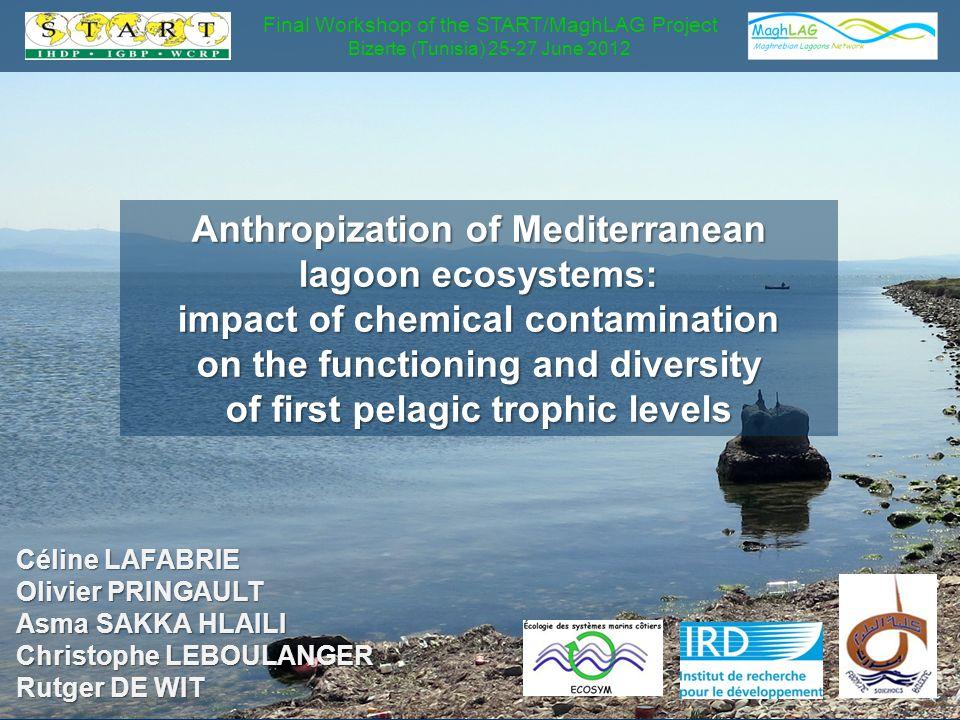 Céline LAFABRIE Olivier PRINGAULT Asma SAKKA HLAILI Christophe LEBOULANGER Rutger DE WIT Anthropization of Mediterranean lagoon ecosystems: impact of