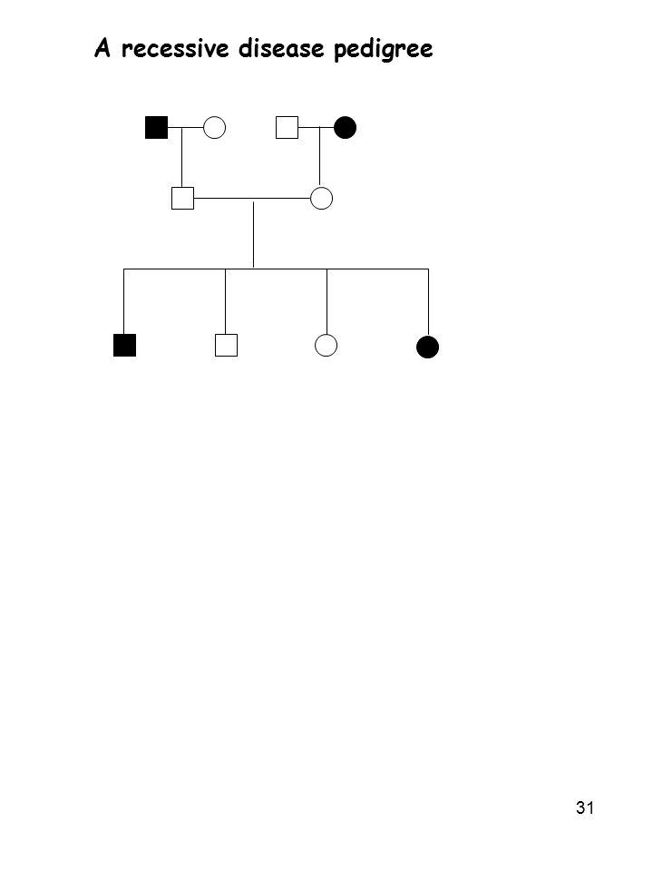 31 A recessive disease pedigree