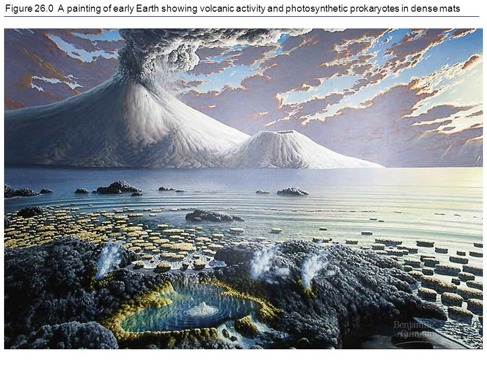 Figure 26.0 A painting of early Earth showing volcanic activity and photosynthetic prokaryotes in dense mats