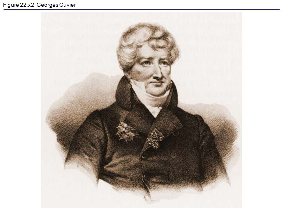 Figure 22.x2 Georges Cuvier