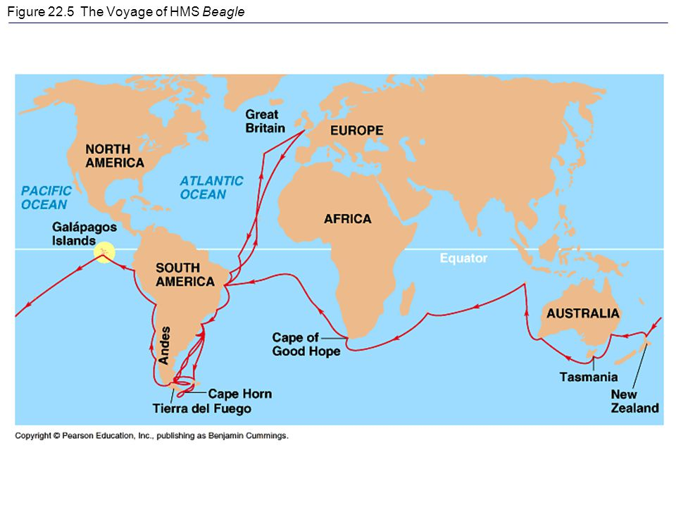 Figure 22.5 The Voyage of HMS Beagle