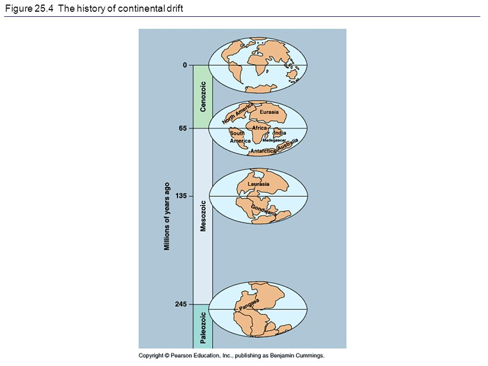 Figure 25.4 The history of continental drift