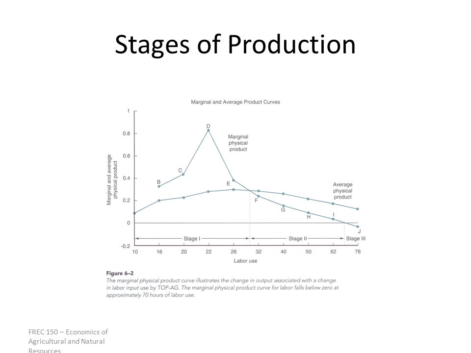 Stages of Production FREC 150 – Economics of Agricultural and Natural Resources