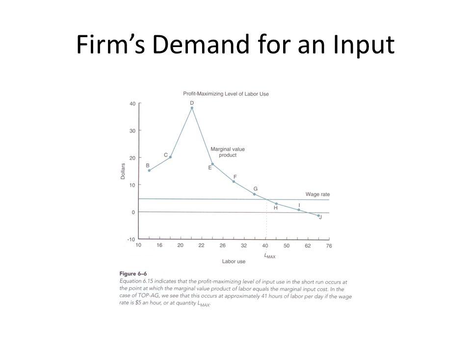 Firm's Demand for an Input