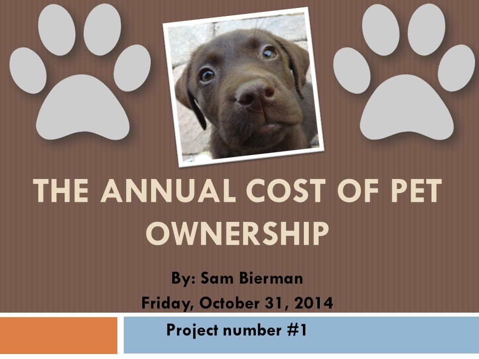 THE ANNUAL COST OF PET OWNERSHIP By: Sam Bierman Friday, October 31, 2014 Project number #1