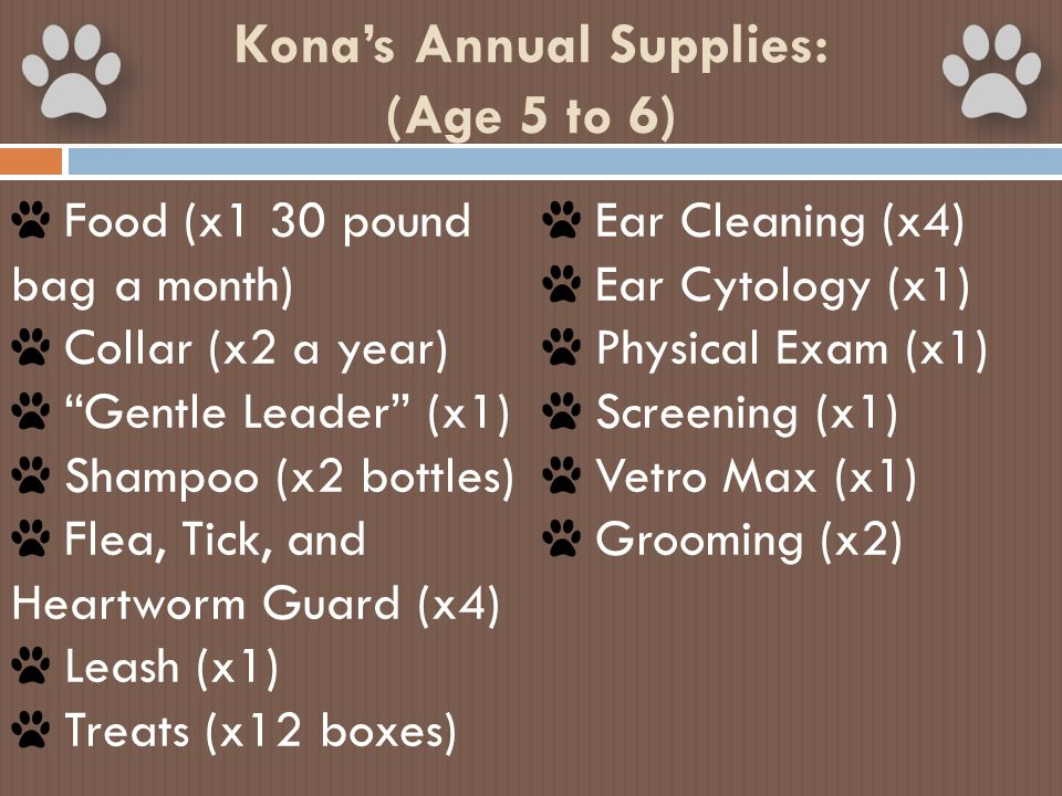 "Kona's Annual Supplies: (Age 5 to 6) Food (x1 30 pound bag a month) Collar (x2 a year) ""Gentle Leader"" (x1) Shampoo (x2 bottles) Flea, Tick, and Heart"