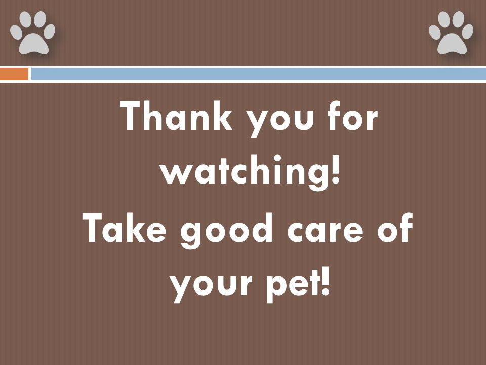Thank you for watching! Take good care of your pet!