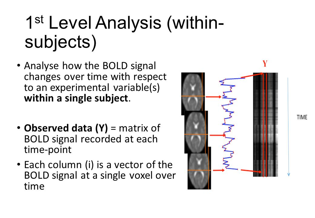 1 st Level Analysis (within- subjects) Analyse how the BOLD signal changes over time with respect to an experimental variable(s) within a single subject.