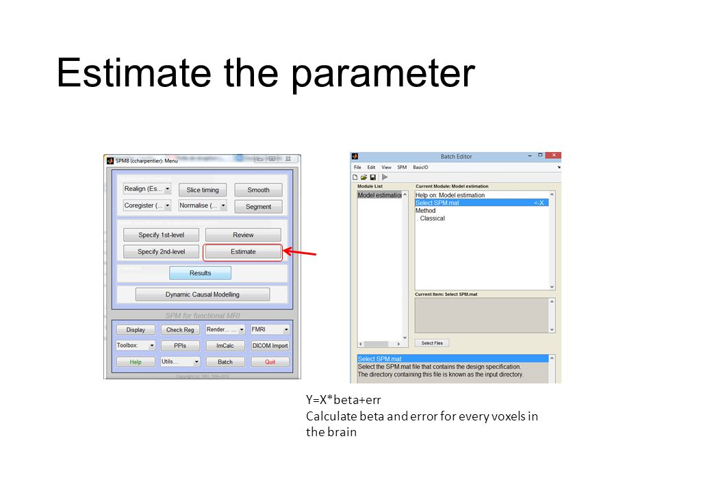 Estimate the parameter Y=X*beta+err Calculate beta and error for every voxels in the brain