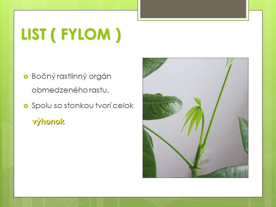 LIST ( FYLOM ) LIST ( FYLOM )  Bočný rastlinný orgán obmedzeného rastu.  Spolu so stonkou tvorí celok výhonok výhonok.