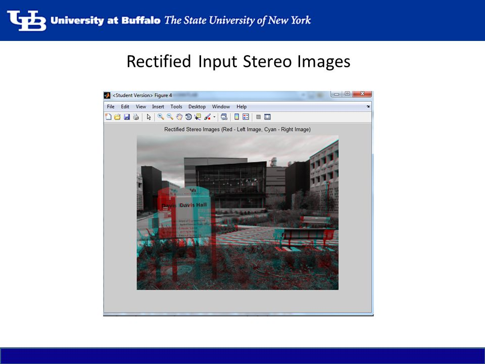 Rectified Input Stereo Images