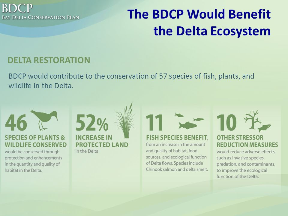 The BDCP Would Benefit the Delta Ecosystem BDCP would contribute to the conservation of 57 species of fish, plants, and wildlife in the Delta.