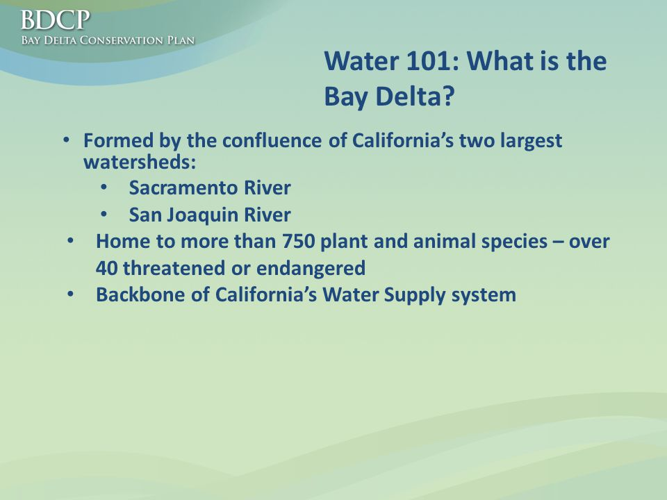 Water 101: What is the Bay Delta.