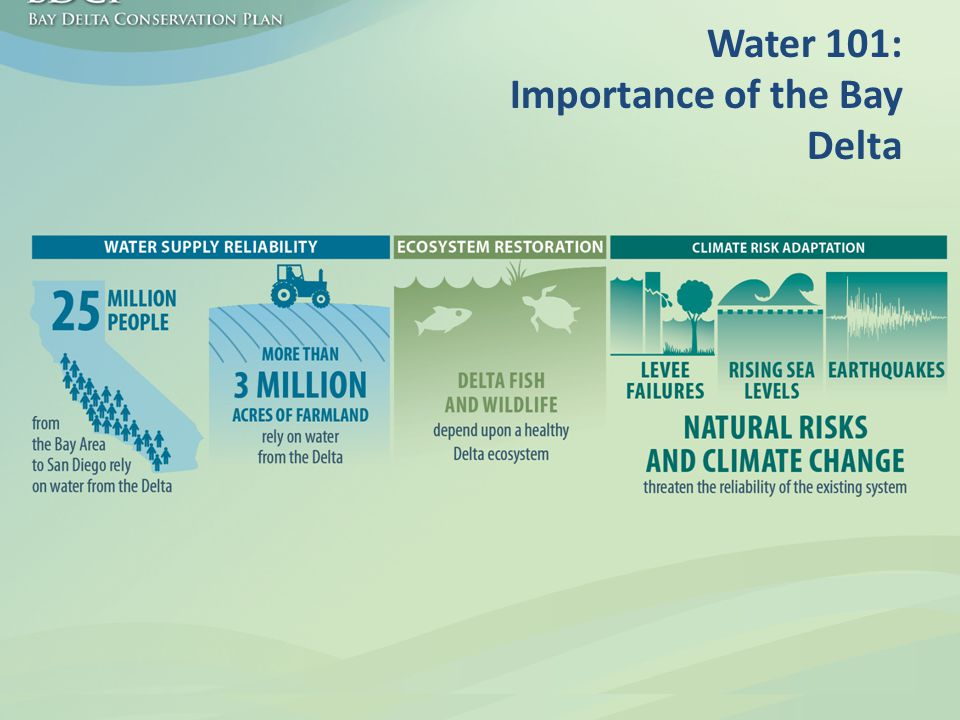 Water 101: Importance of the Bay Delta