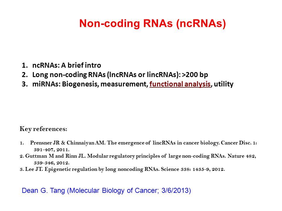 Non-coding RNAs (ncRNAs) Key references: 1.Prensner JR & Chinnaiyan AM. The emergence of lincRNAs in cancer biology. Cancer Disc. 1: 391-407, 2011. 2.
