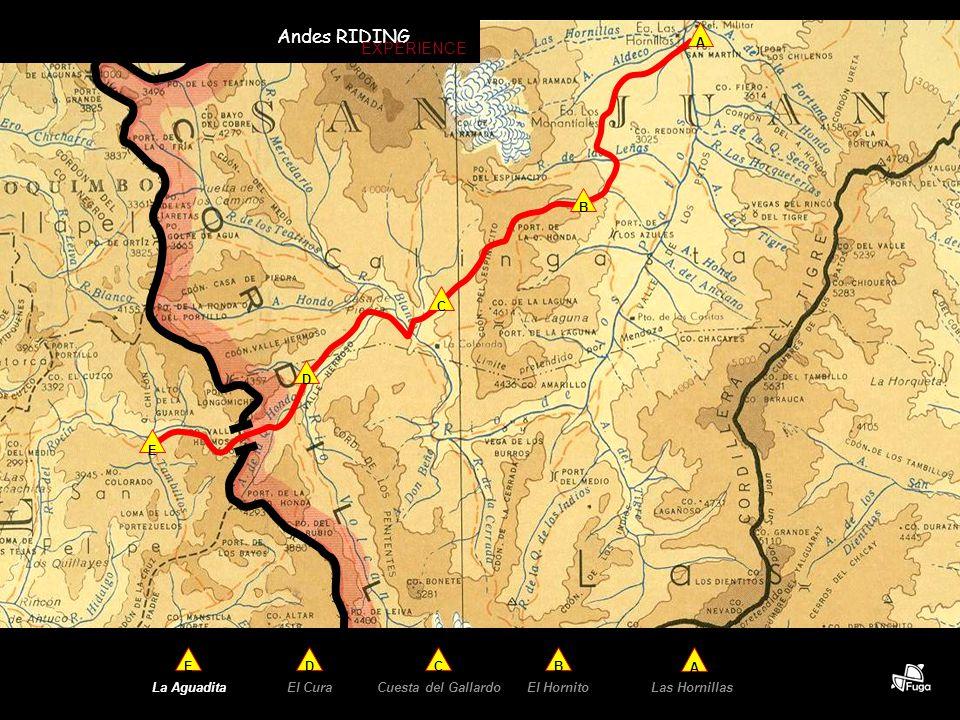 E B C D A El Hornito A B Las HornillasCuesta del Gallardo C La Aguadita E El Cura D Andes RIDING EXPERIENCE