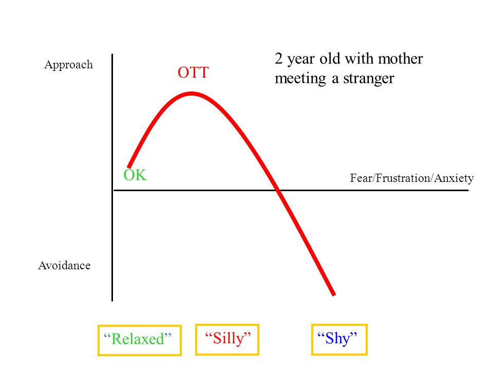 Fear/Frustration/Anxiety Approach OTT OK Relaxed Avoidance Silly Shy 2 year old with mother meeting a stranger