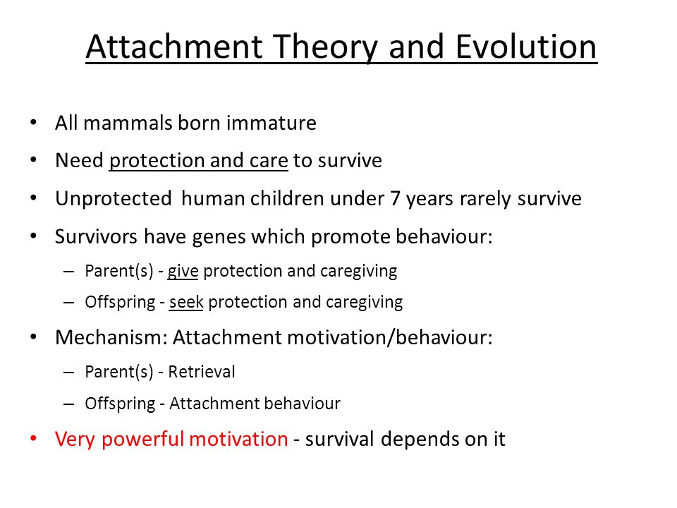 Attachment Theory and Evolution All mammals born immature Need protection and care to survive Unprotected human children under 7 years rarely survive Survivors have genes which promote behaviour: – Parent(s) - give protection and caregiving – Offspring - seek protection and caregiving Mechanism: Attachment motivation/behaviour: – Parent(s) - Retrieval – Offspring - Attachment behaviour Very powerful motivation - survival depends on it