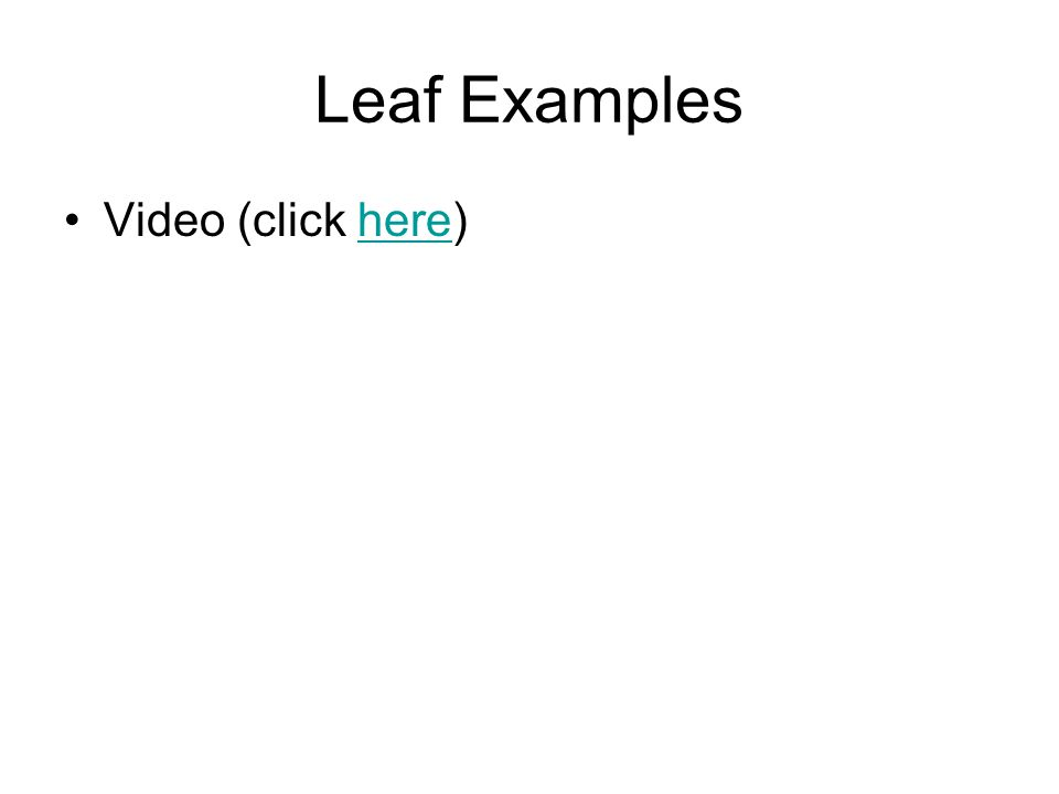 Leaf Examples Video (click here)here