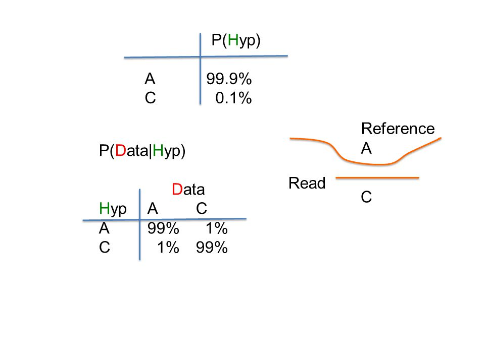 P(Data|Hyp) Data HypAC A99% 1% C 1%99% P(Hyp) A 99.9% C 0.1% Reference A C Read