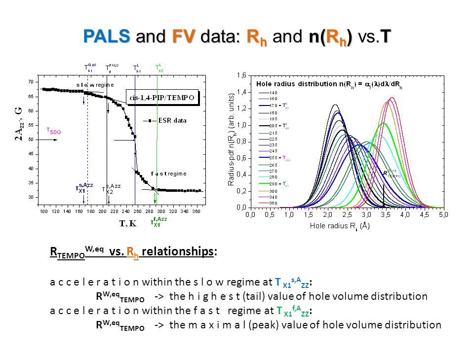PALS and FVdata: R h n(R h ) T PALS and FV data: R h and n(R h ) vs.T R TEMPO W,eq vs. R h relationships: a c c e l e r a t i o n within the s l o w r