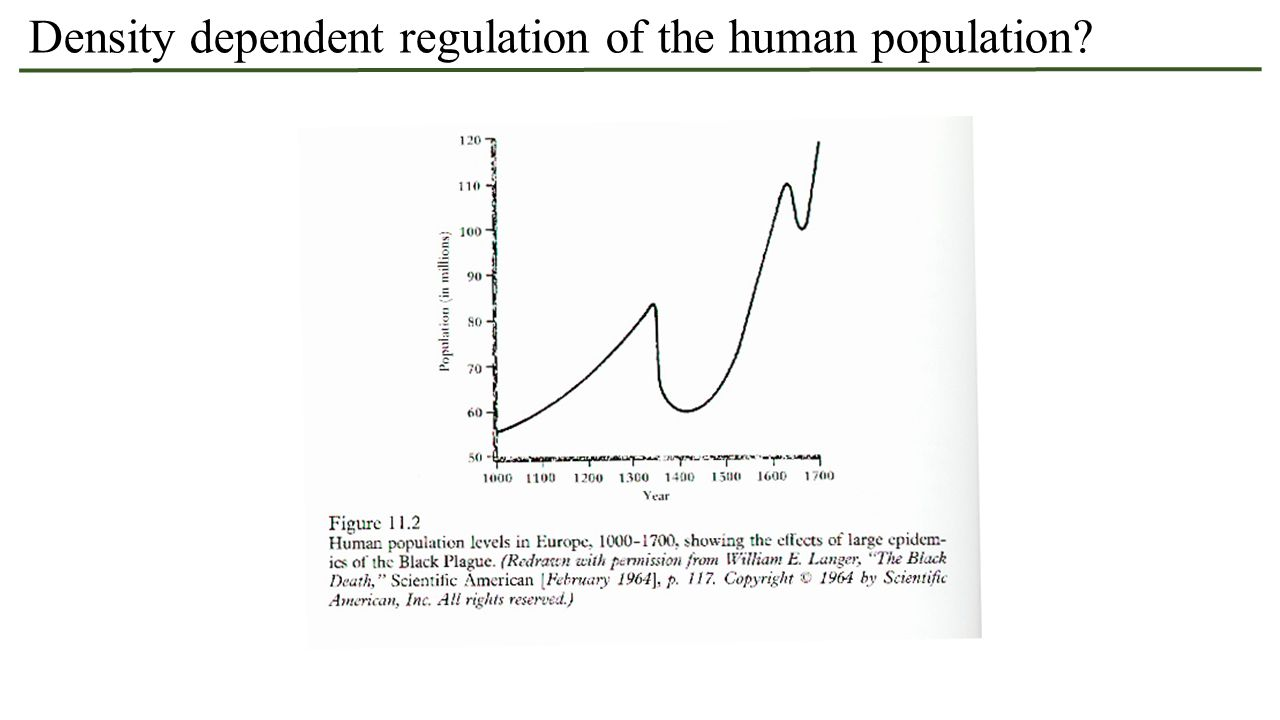 Density dependent regulation of the human population?