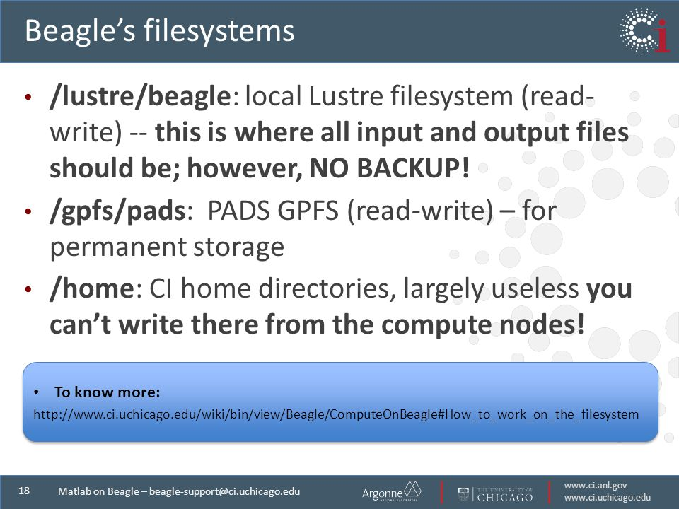 Matlab on Beagle – Beagle's filesystems /lustre/beagle: local Lustre filesystem (read- write) -- this is where all input and output files should be; however, NO BACKUP.