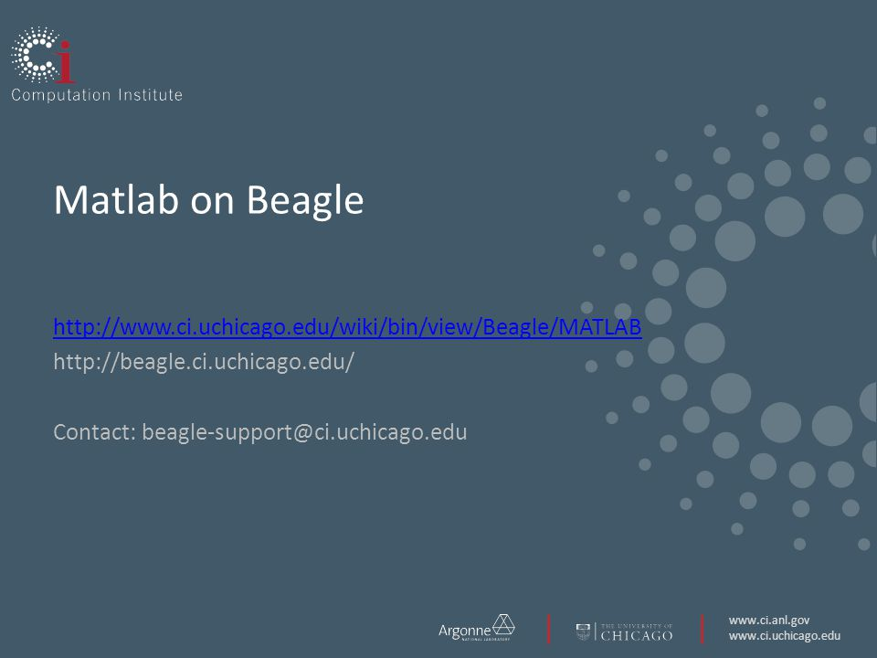 Matlab on Beagle     Contact:
