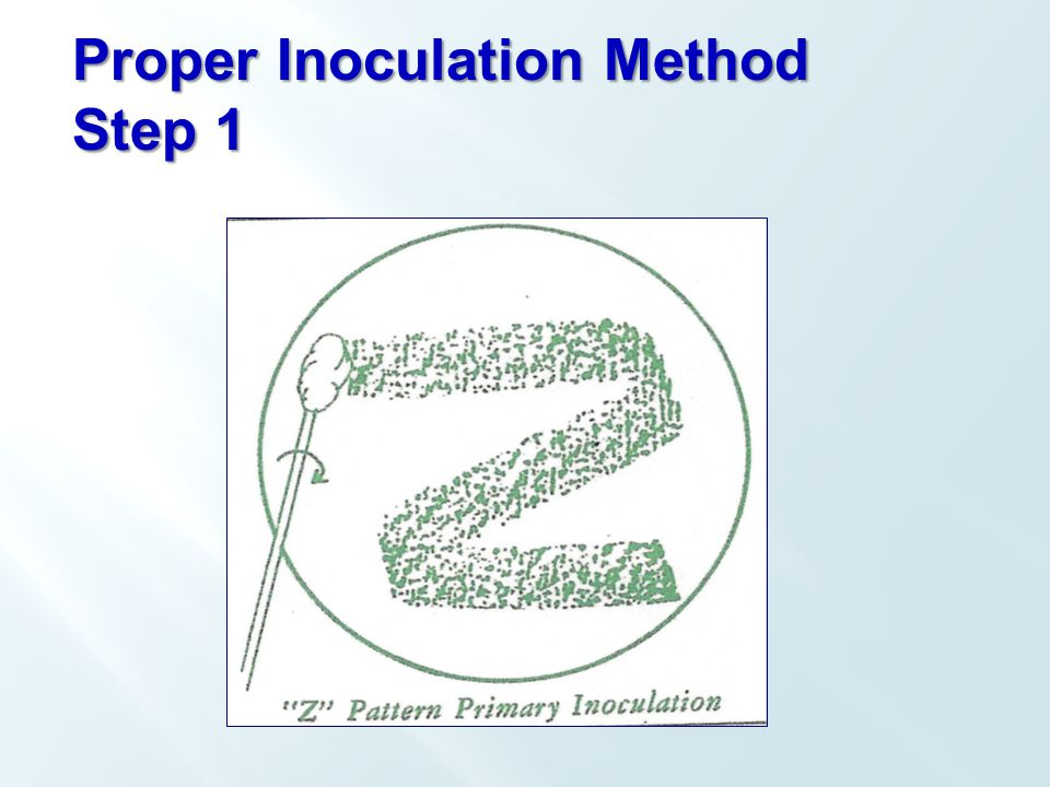 Proper Inoculation Method Step 1